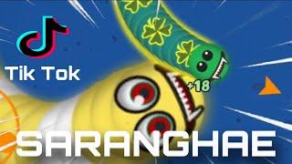 Download DJ SARANGHAE TIK TOK VIRAL TARIK SIS SEMONGKO VERSI CACING