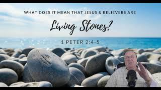 living stones 7 25 19