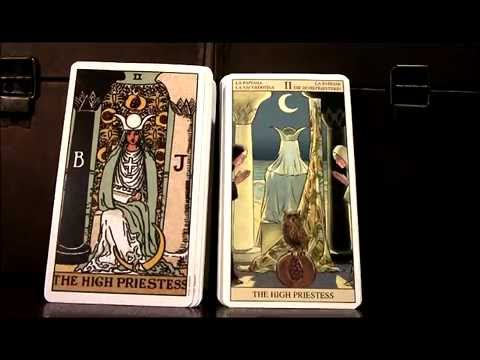 tarot of new vision cards