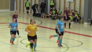 Naisten futsal-liiga 2018-2019 / Ylöjärven Ilves vs. Liikunnan Riemu maalikooste 2.2.2019