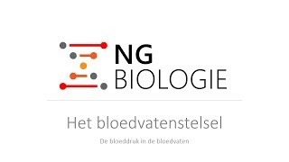 Het bloedvatenstelsel - de bloeddruk in de bloedvaten - HAVO/VWO