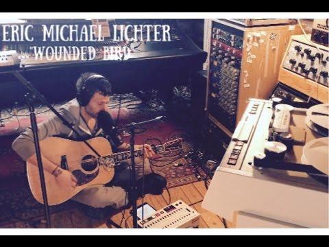"Eric Michael Lichter ""Wounded Bird"""