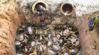 Amazing Smart Boy Deep Bamboo Hole Catch A Lot Of Crabs In Cambodia thumbnail