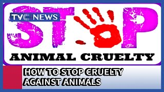 How to stop Cruelty against Animals