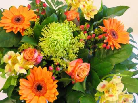 Free Flowers Screensaver - YouTube