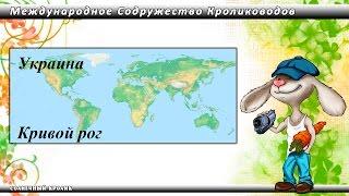 Кролики Украина. Кривой рог.(, 2016-03-02T08:14:20.000Z)