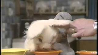 The Sooty Show - Snuffles