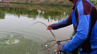 Best Catla Fishing Videos By Prince In Village Pond