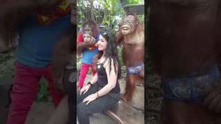 Super saxi videos