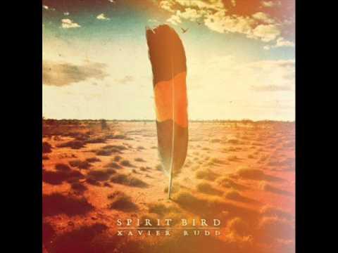 Xavier Rudd - Paperthin w/ Lyrics