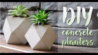 DIY Concrete Planters