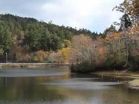 段戸湖 2010年11月10日