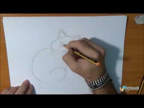 Imparare A Disegnare Un Gatto Facilmente Youtube