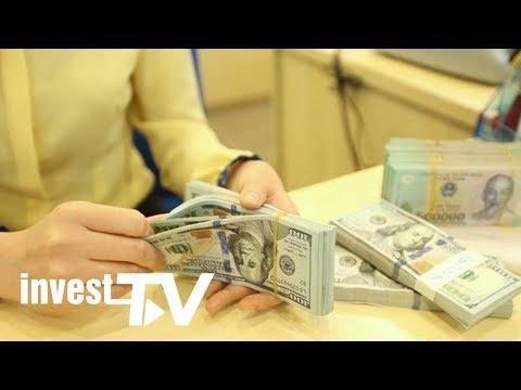 Tỷ Giá Hôm Nay: Thị Trường USD Trong Nước Giảm Nhẹ
