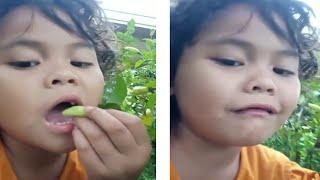 Vlog Anak lucu makan CABE rawit KEPEDASAN - jihana vlog
