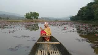 Dibir Haor, Jaintapur, Sylhet