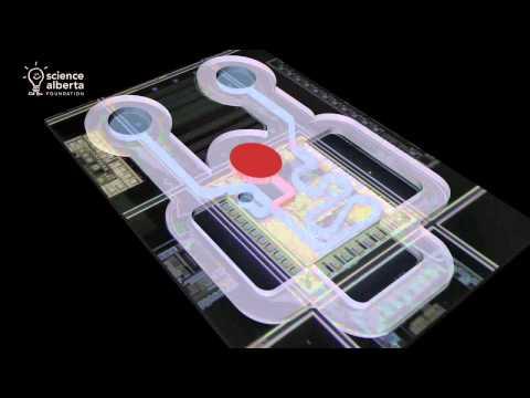 Edacity: Cool Careers - Nanotechnology