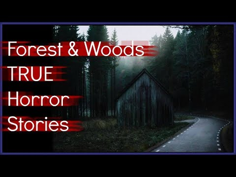 5 TRUE Scary Wilderness & Woods HORROR Stories! | Halloween Special