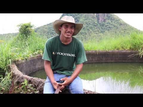 Proyecto Ganadería Sostenible-Finca Lajitas-UNA-MAG
