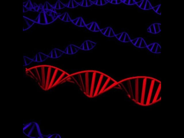 weve evolved an even more powerful form of crispr gene editing new scientist