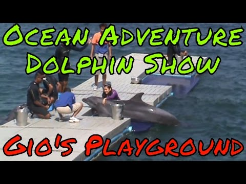 Subic Bay Freeport Zone Road Trip and Ocean Adventure Dolphin Show