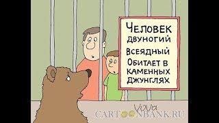 """сколько стоит содержать гражданина РФ ,на примере зоопарка  """"уже как ежик но еще не ослик 2.0"""""""