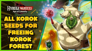 All Korok Seeds For Freeing Korok Forest Hyrule Warriors Age Of Calamity Youtube