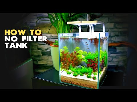 aquascape-tutorial:-3-gal-nano-aquarium-w/-chili-rasbora-(how-to:-step-by-step-no-filter-guide)