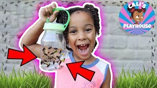 Adventures with Cali | Finding Bugs! | Cali's Playhouse