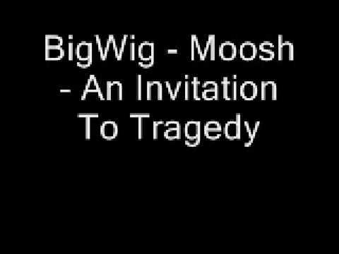 BigWig - Moosh