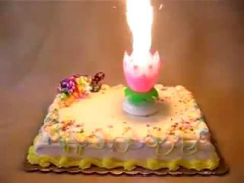 Birthday Candle Lotus Rotating Cake