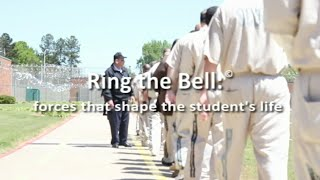 DISC 1 Ring The Bell Thumbnail
