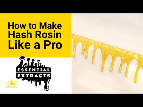 How to Make Hash Rosin Like a Pro