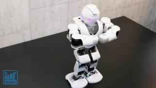 Робот ALPHA в Компьютерной Академии ШАГ Кривой Рог