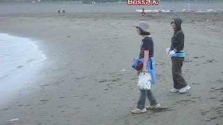 くろいものwan友と海岸で朝散歩。 お竜さん泳ぐ!!