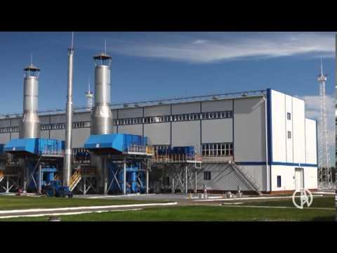 Ufa State Petroleum Technological University(china)