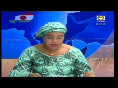 Le JT du Niger Samedi 03 01 2015