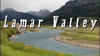 Lamar Valley, Yellowstone National Park Video (HD)