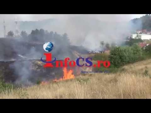Dezastru ecologic la Câlnic - pădurea în flăcări 09 aug