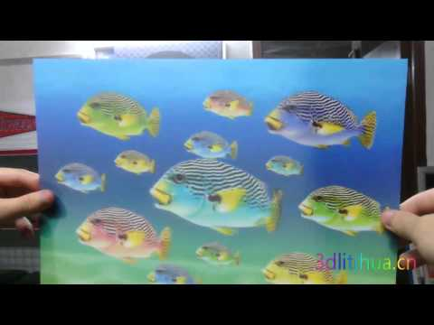 swimming fish animation effects 3d lenticular products