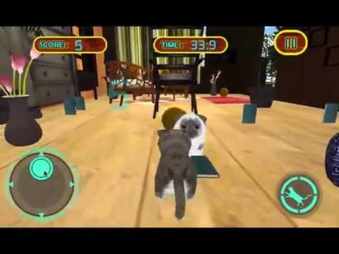 Котик 3d играть