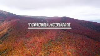 東北紅葉・Beautiful Autumn of Tohoku