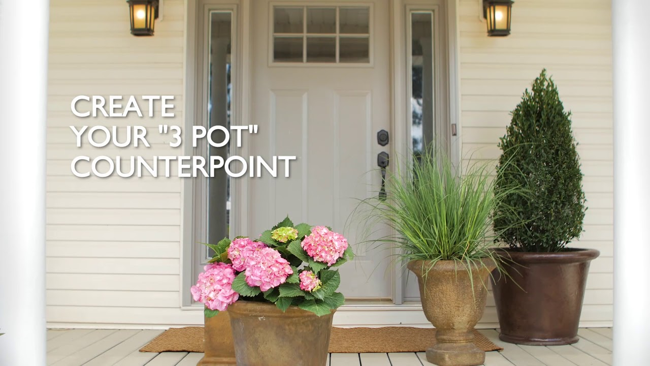 How to spruce up your front porch w plants