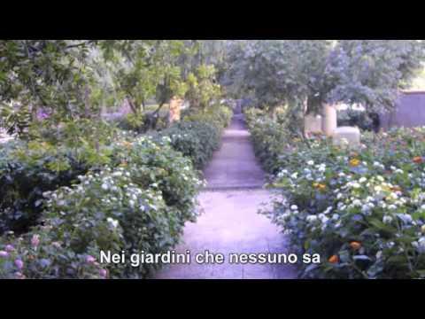 Renato Zero - Nei giardini che nessuno sa (con testo)