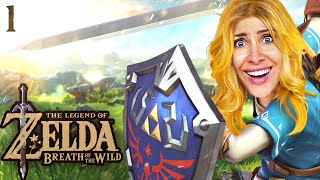 Eine lange Reise beginnt! Zelda Breath of the Wild Part 1