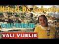 Download Hituri de colectie cu VALI VIJELIE (Colaj manele)