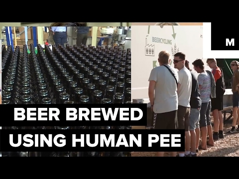 Recycled human urine as a key ingredient in novelty craft beer