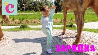 Утренняя зарядка в парке ► София маленькая(Сегодня мы гуляли в парке. Делаем зарядку под музыку. Фитнес очень полезен не только для детей, а также для..., 2016-04-30T13:32:51.000Z)