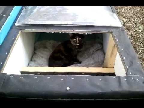 Winter Cat Shelter House  Feral Cat DayWinter Cat Shelter House  Feral Cat Day   YouTube. Outdoor Cat House Winter Warmer. Home Design Ideas