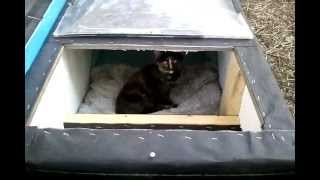 Winter Cat Shelter/House: Feral Cat Day